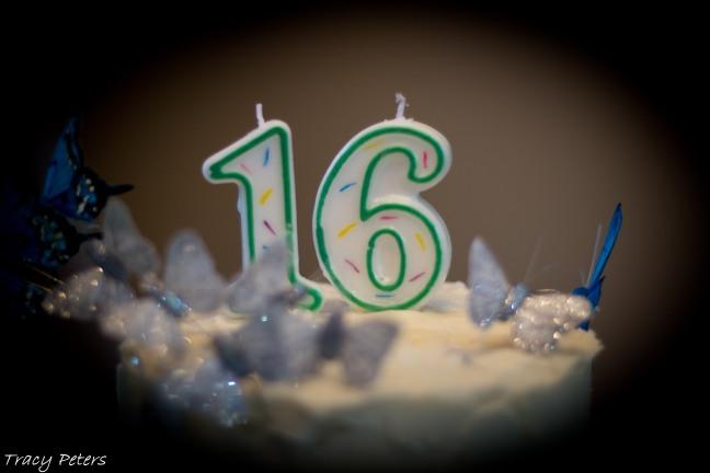 Celebrating_Life_9-12-1